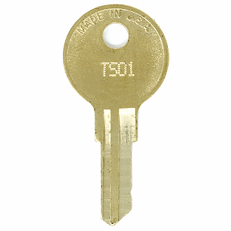 Hudson TS01 - TS1000 - TS261 Replacement Key
